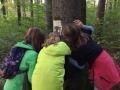 Waldgesichter-7