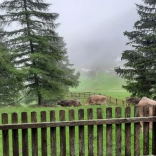 SoLa20_Tirol_009